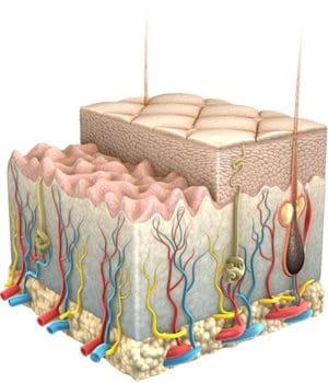 eucerin sc ageing skin wrinkles 01 - Beneficios del ácido hialurónico.